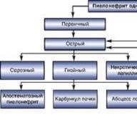 Пиелонефрит: причины возникновения, симптомы и лечение Каким может быть пиелонефрит
